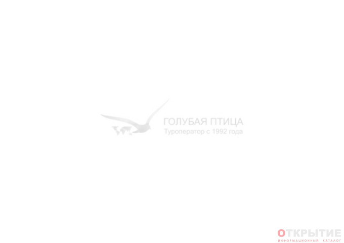 Туристическая компания | Bluebird.бай