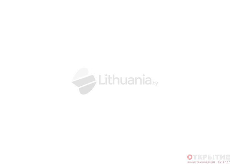 Информационно-туристическое агентство | Lithuania.бай