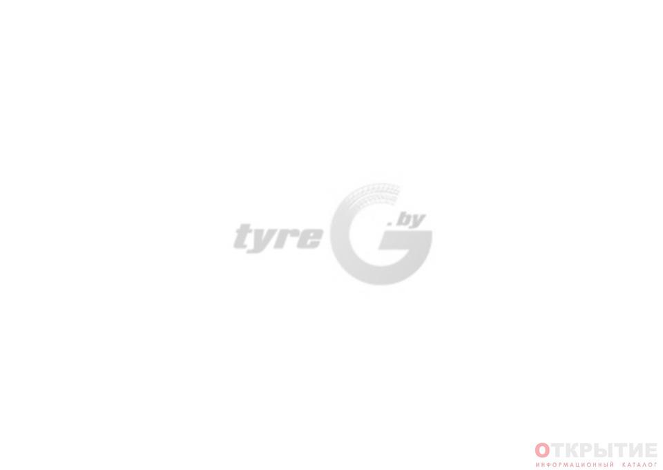 Интернет-магазин шин и дисков, шиномонтаж   Tyreg.бай