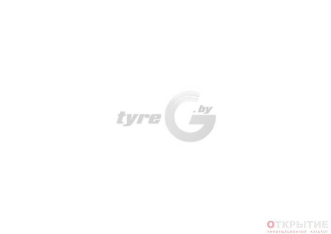 Интернет-магазин шин и дисков, шиномонтаж | Tyreg.бай
