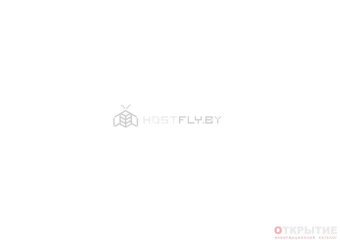 Белорусский хостинг-провайдер | Hostfly.бай