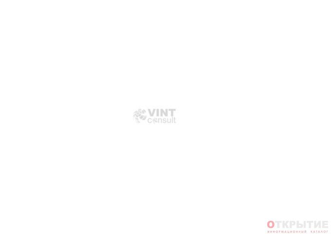 Бизнес-консалтинг | Vintconsult.ком