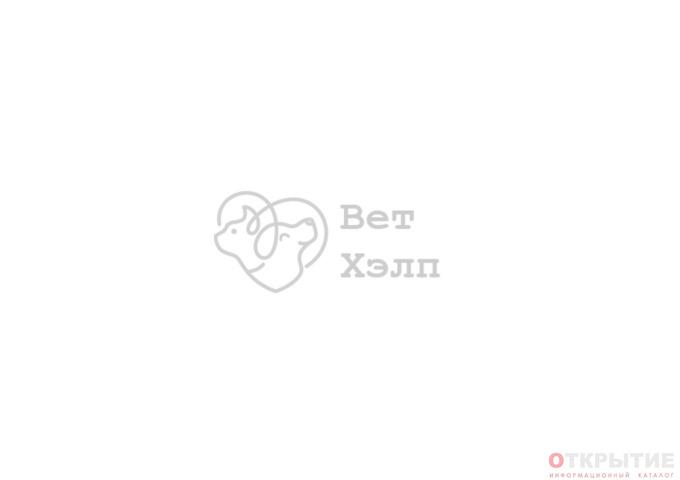 Ветеринарная клиника в Минске | Vet-help.бай