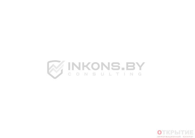 Бизнес-план, оценка имущества, экологическая документация | Inkons.бай