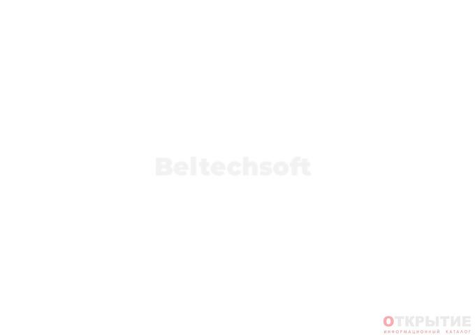 Разработка сайтов и сервисов | Beltechsoft.бай
