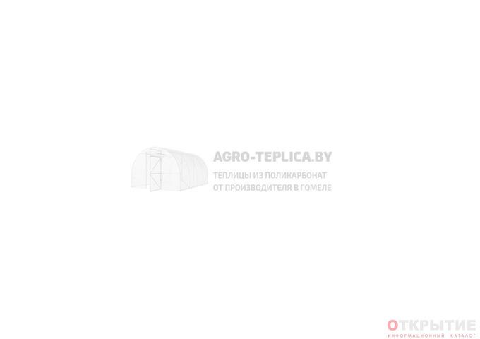 Теплицы из поликарбоната от производителя в Гомеле | Agro-teplica.бай