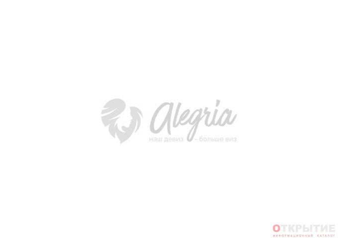 Визовый центр | Alegria.бай